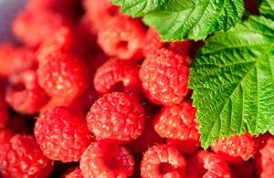 2_raspberries